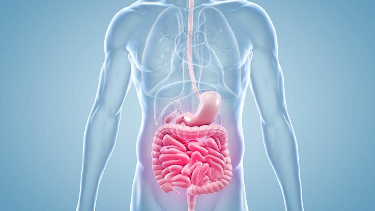 Malattie intestinali